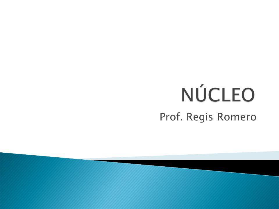 Prof. Regis Romero