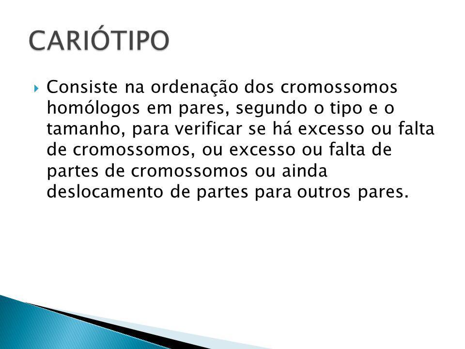 Consiste na ordenação dos cromossomos homólogos em pares, segundo o tipo e o tamanho, para verificar se há excesso ou falta de cromossomos, ou excesso ou falta de partes de cromossomos ou ainda deslocamento de partes para outros pares.