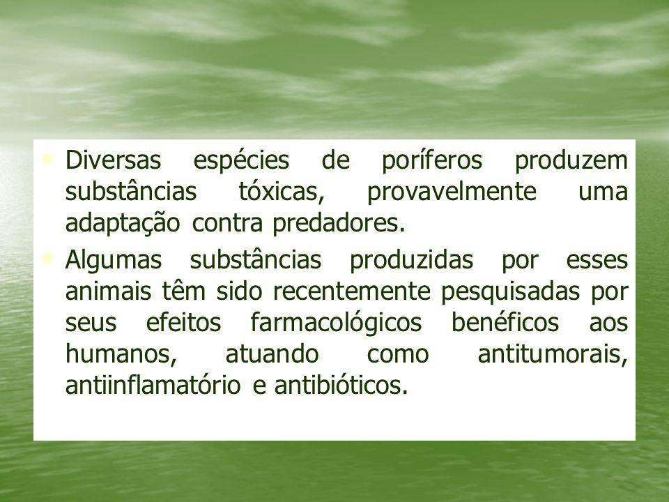 Diversas espécies de poríferos produzem substâncias tóxicas, provavelmente uma adaptação contra predadores.