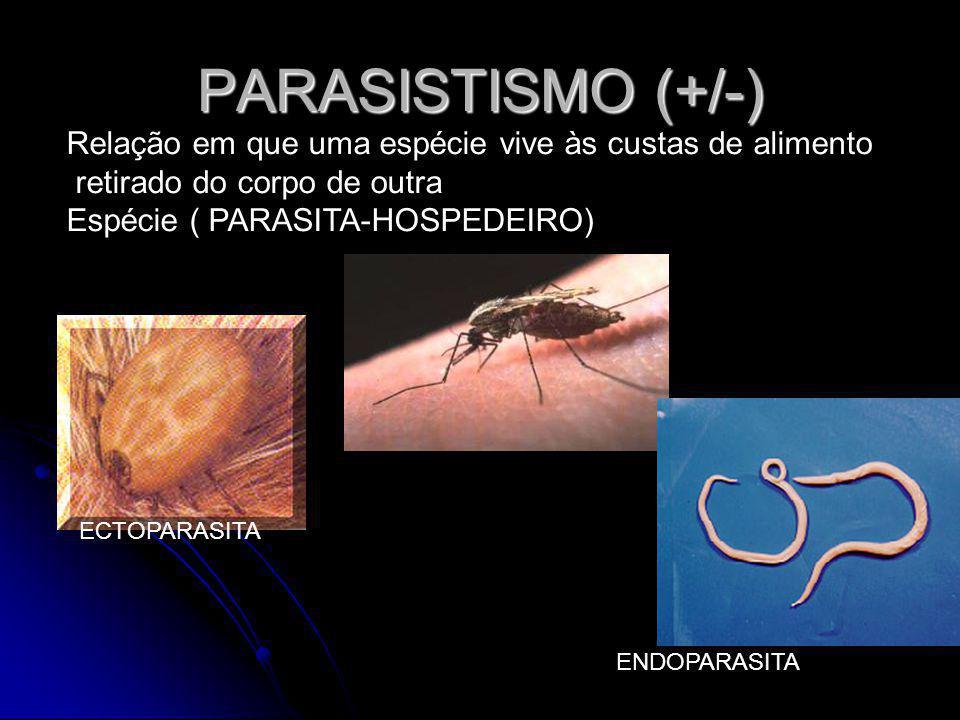 PARASISTISMO (+/-) Relação em que uma espécie vive às custas de alimento. retirado do corpo de outra.