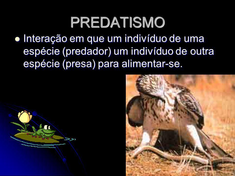 PREDATISMO Interação em que um indivíduo de uma espécie (predador) um indivíduo de outra espécie (presa) para alimentar-se.