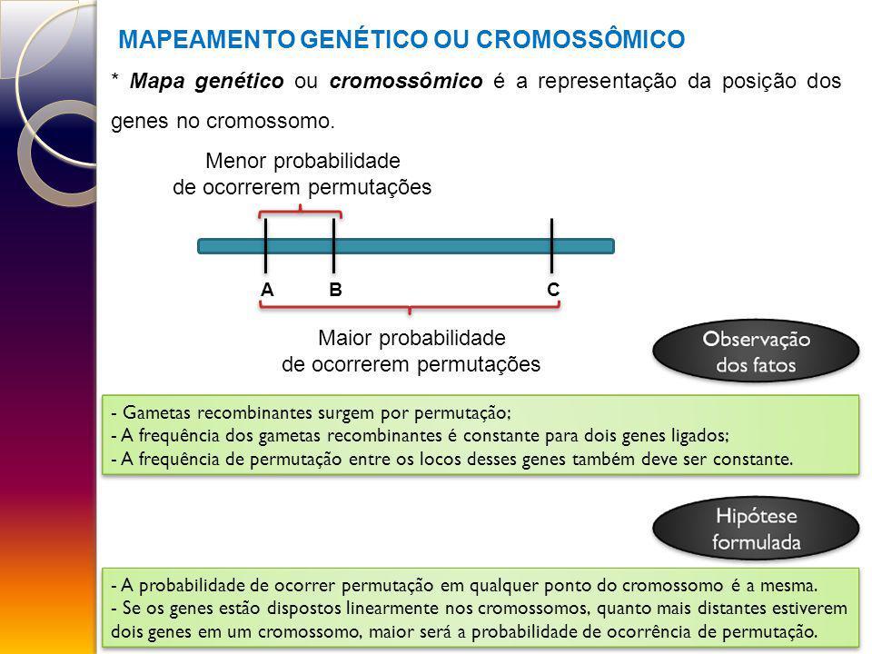 MAPEAMENTO GENÉTICO OU CROMOSSÔMICO