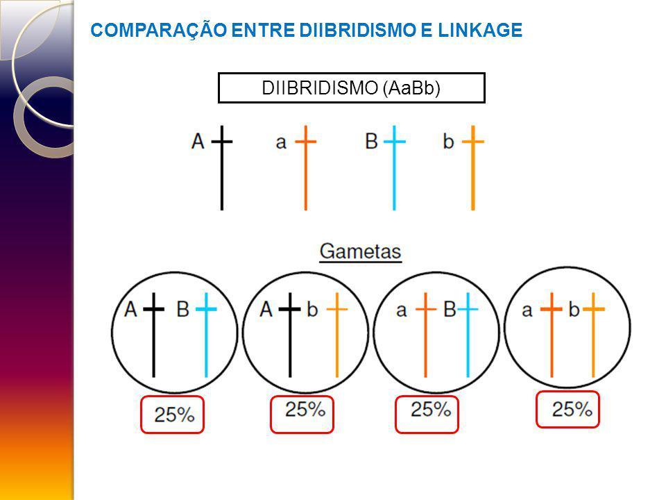 COMPARAÇÃO ENTRE DIIBRIDISMO E LINKAGE