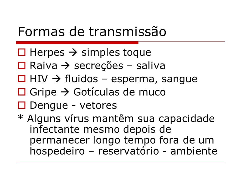 Formas de transmissão Herpes  simples toque