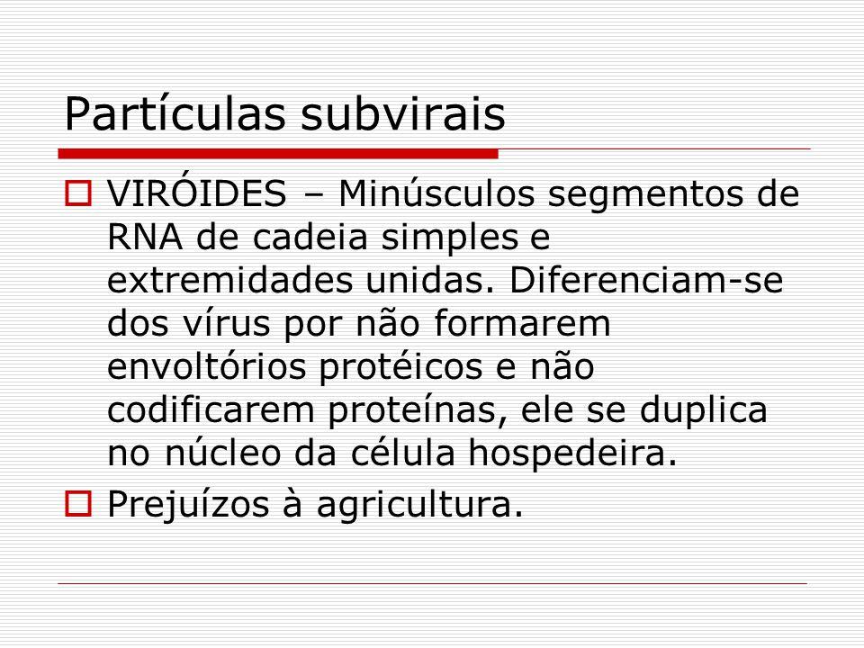 Partículas subvirais