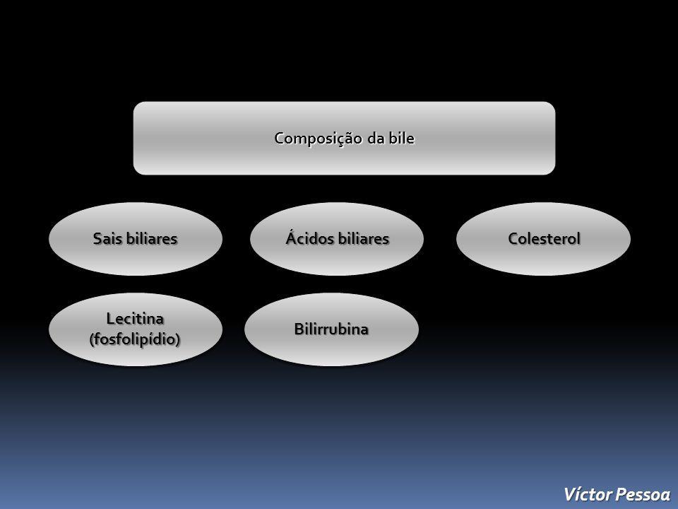 Víctor Pessoa Composição da bile Sais biliares Ácidos biliares