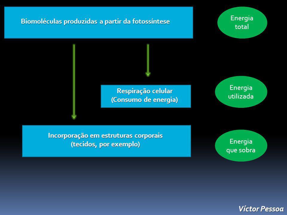 Víctor Pessoa Energia total