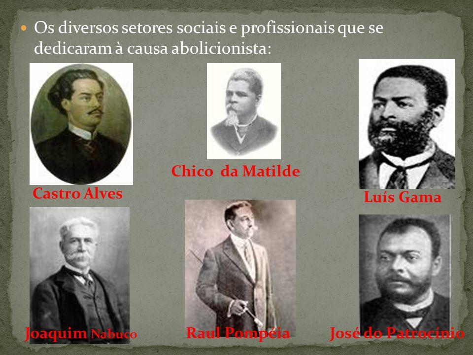 Os diversos setores sociais e profissionais que se dedicaram à causa abolicionista: