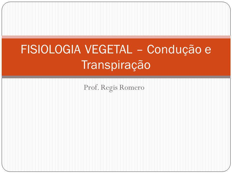 FISIOLOGIA VEGETAL – Condução e Transpiração