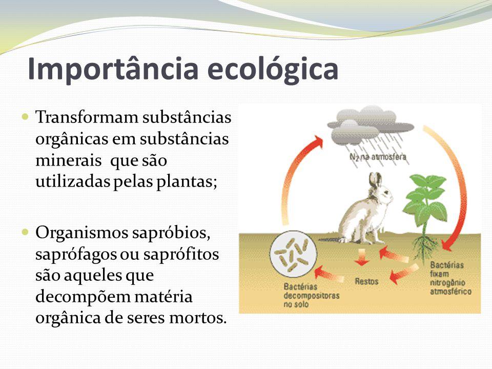 Importância ecológica