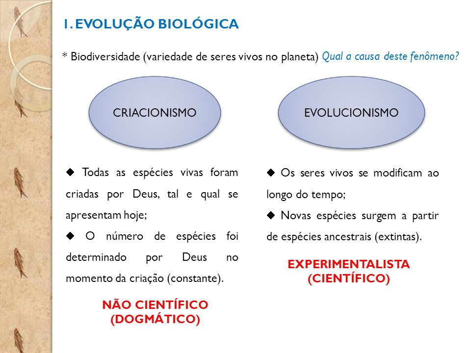 EXPERIMENTALISTA (CIENTÍFICO) NÃO CIENTÍFICO (DOGMÁTICO)