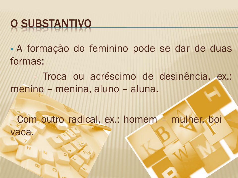 O substantivo A formação do feminino pode se dar de duas formas: