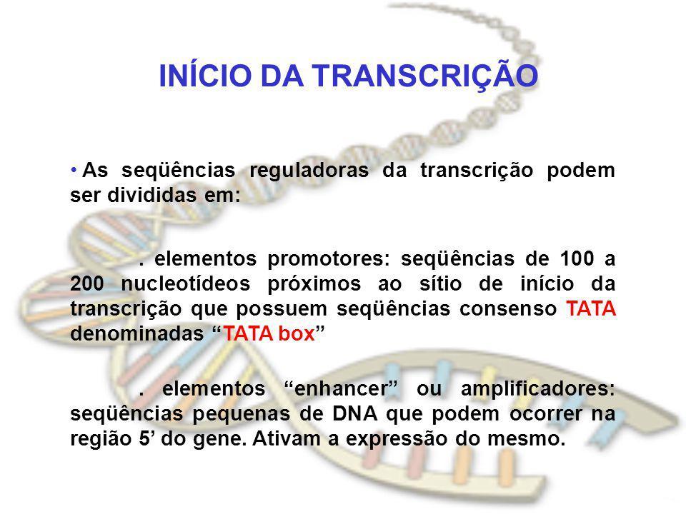 INÍCIO DA TRANSCRIÇÃO As seqüências reguladoras da transcrição podem ser divididas em: