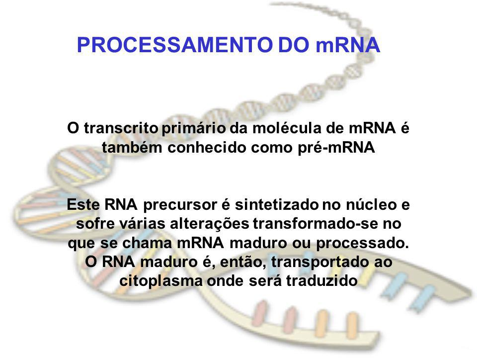 PROCESSAMENTO DO mRNA O transcrito primário da molécula de mRNA é também conhecido como pré-mRNA.