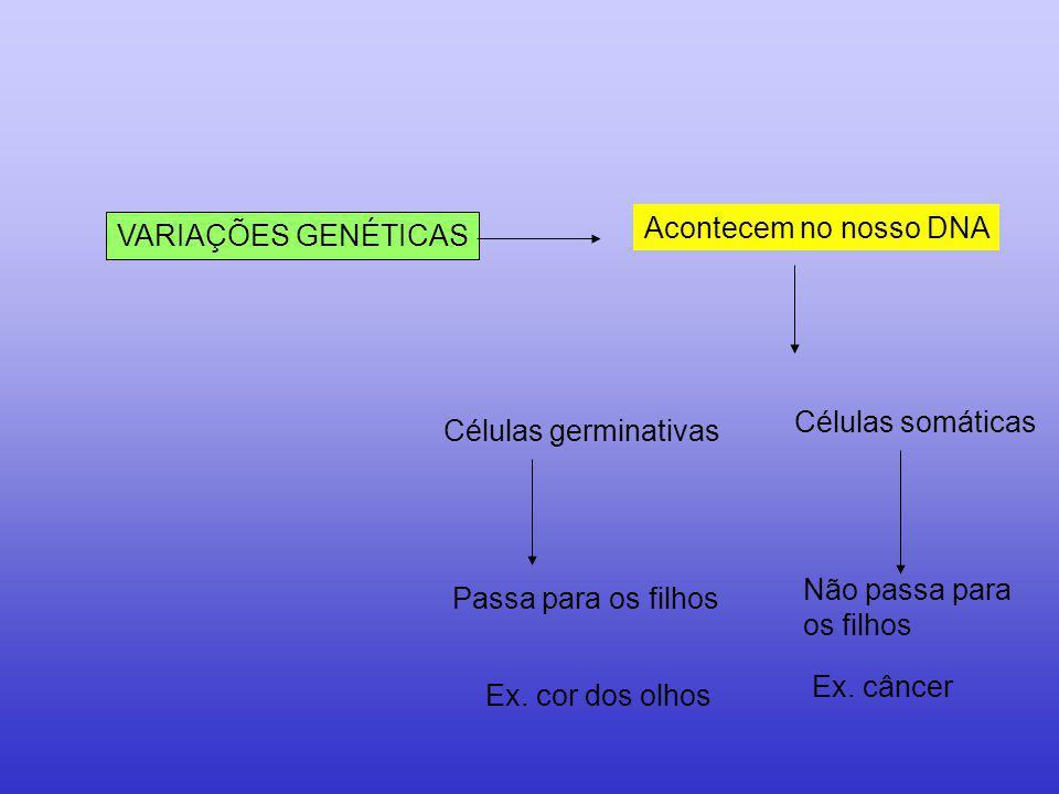 Acontecem no nosso DNA VARIAÇÕES GENÉTICAS. Células somáticas. Células germinativas. Não passa para.