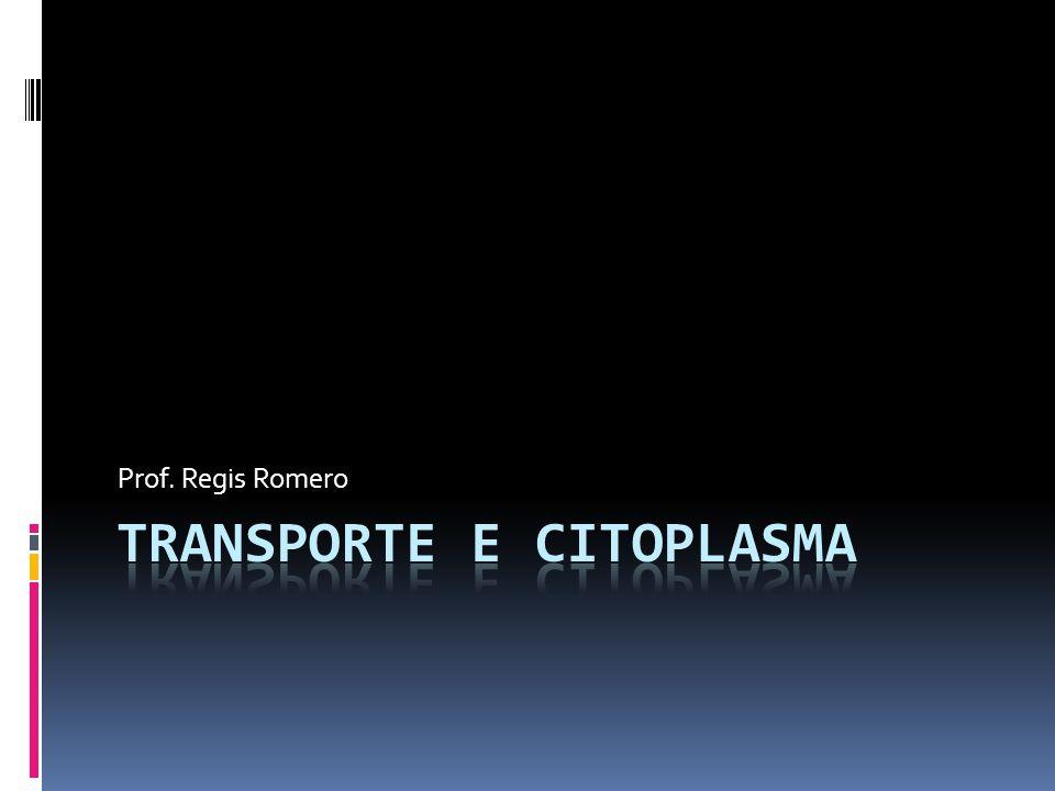 Transporte e citoplasma
