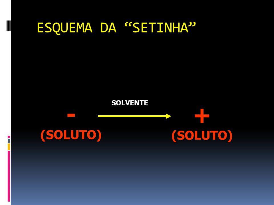 ESQUEMA DA SETINHA - (SOLUTO) SOLVENTE + (SOLUTO)