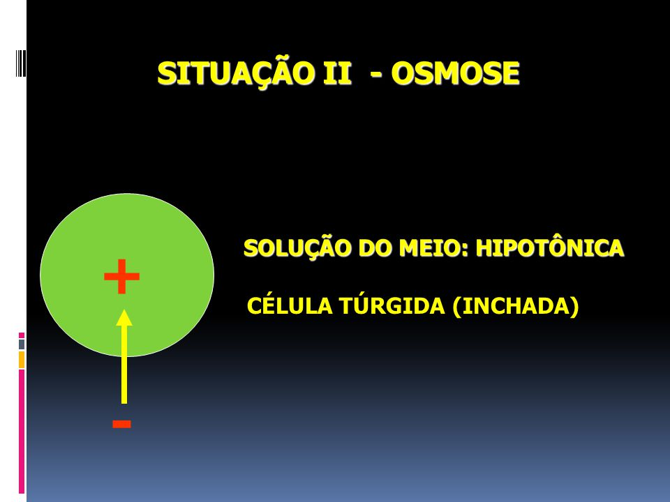 + - SITUAÇÃO II - OSMOSE SOLUÇÃO DO MEIO: HIPOTÔNICA