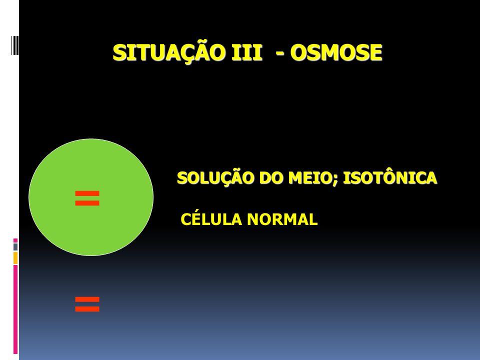 SITUAÇÃO III - OSMOSE SOLUÇÃO DO MEIO; ISOTÔNICA = CÉLULA NORMAL =