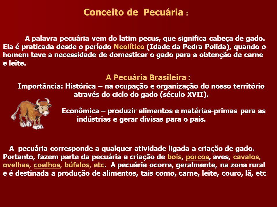 A Pecuária Brasileira :