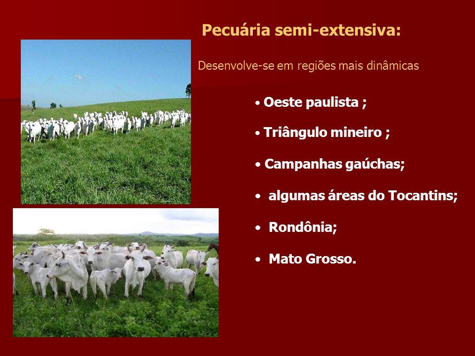 algumas áreas do Tocantins; Rondônia; Mato Grosso.