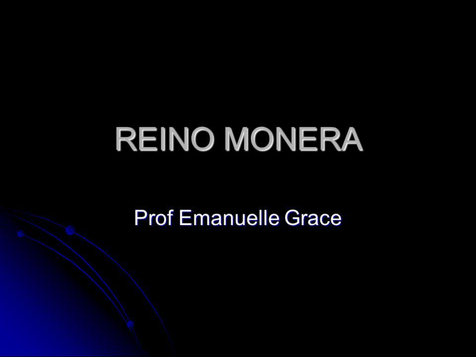 REINO MONERA Prof Emanuelle Grace