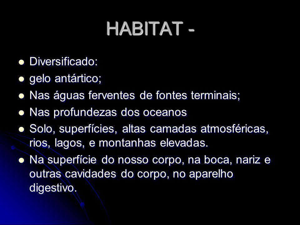HABITAT - Diversificado: gelo antártico;