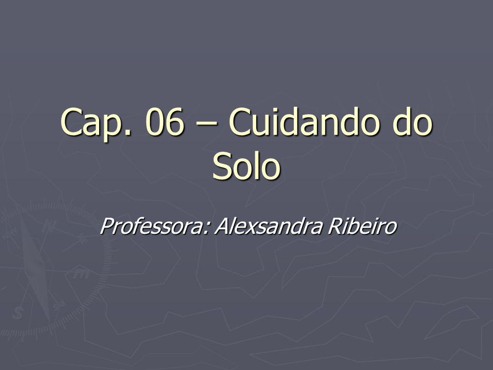 Professora: Alexsandra Ribeiro