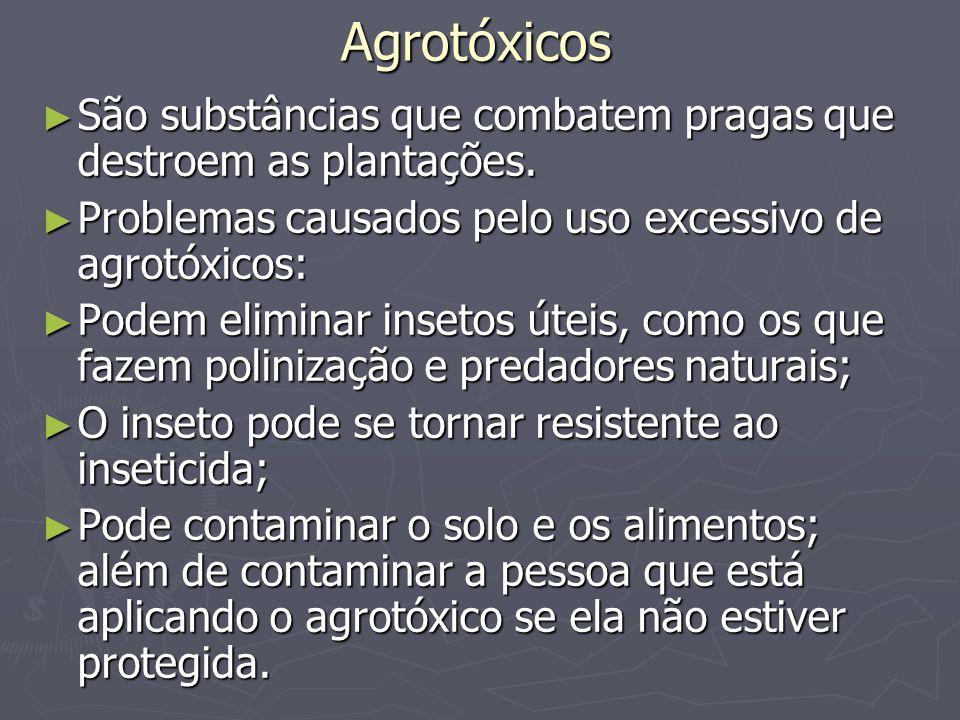 Agrotóxicos São substâncias que combatem pragas que destroem as plantações. Problemas causados pelo uso excessivo de agrotóxicos:
