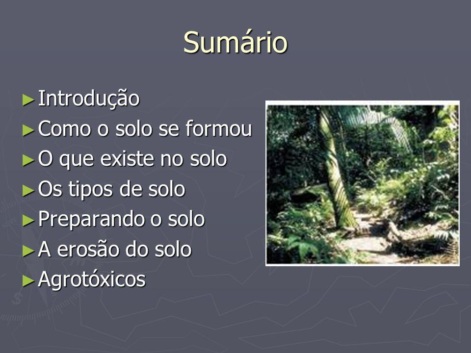 Sumário Introdução Como o solo se formou O que existe no solo