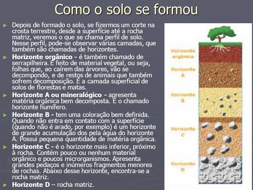 Como o solo se formou