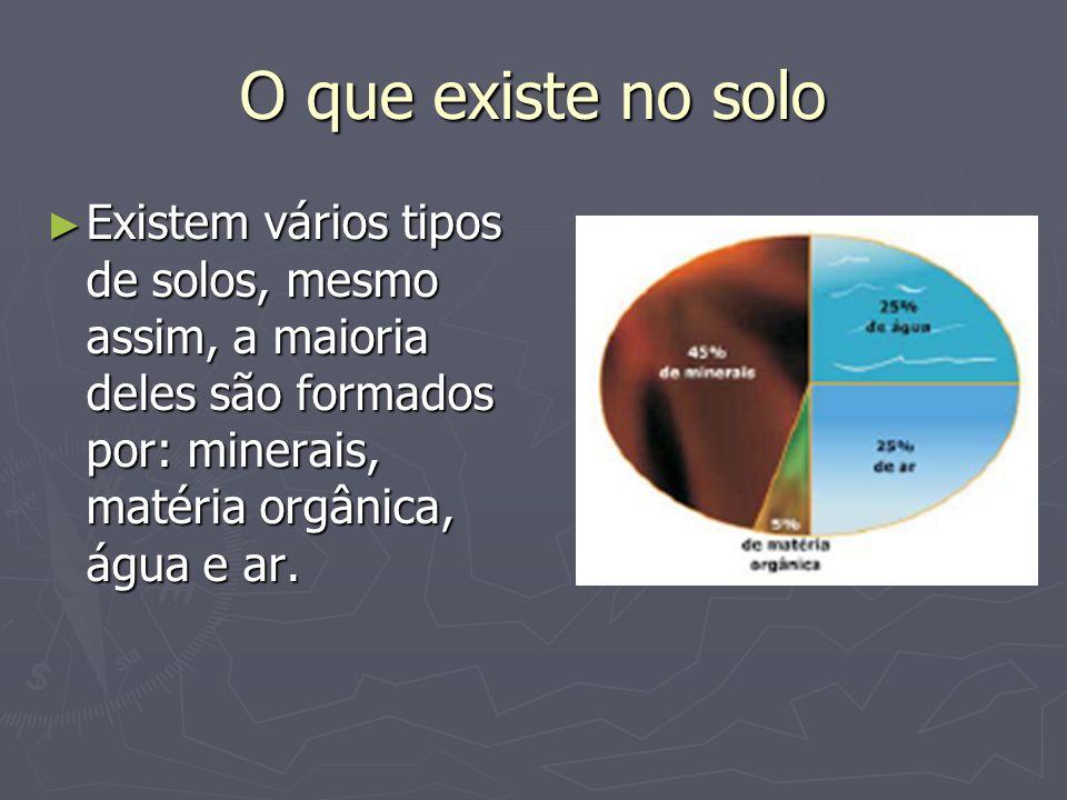 O que existe no solo Existem vários tipos de solos, mesmo assim, a maioria deles são formados por: minerais, matéria orgânica, água e ar.