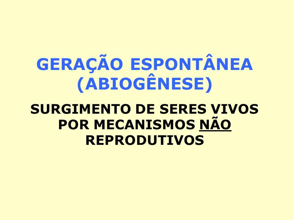GERAÇÃO ESPONTÂNEA (ABIOGÊNESE)