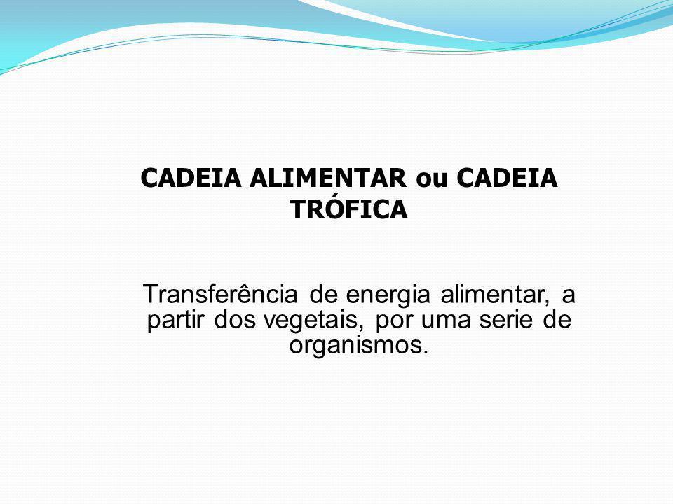 CADEIA ALIMENTAR ou CADEIA TRÓFICA