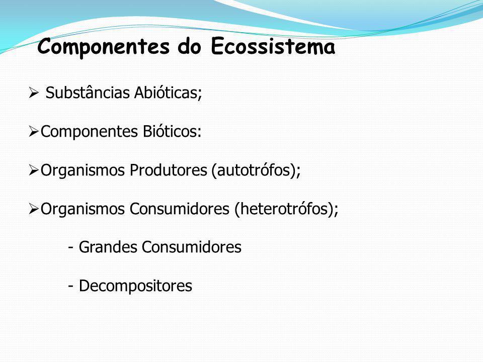 Componentes do Ecossistema