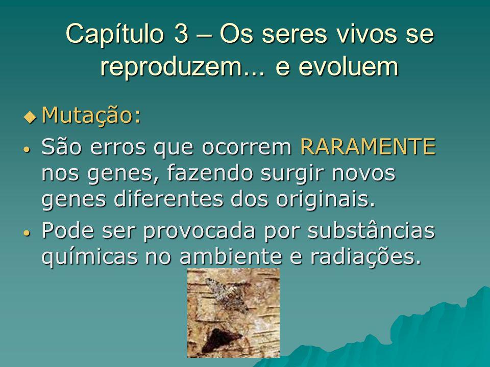 Capítulo 3 – Os seres vivos se reproduzem... e evoluem