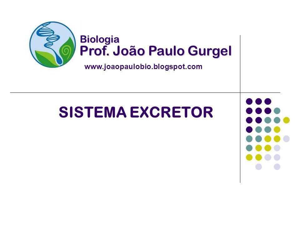 SISTEMA EXCRETOR Prof. João Paulo Gurgel Biologia