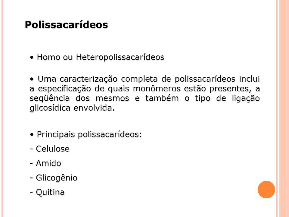 Polissacarídeos • Homo ou Heteropolissacarídeos