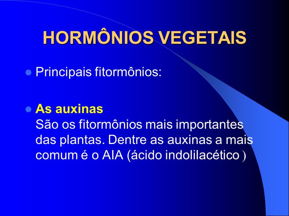 HORMÔNIOS VEGETAIS Principais fitormônios: