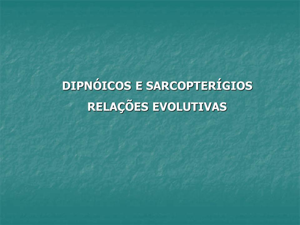 DIPNÓICOS E SARCOPTERÍGIOS
