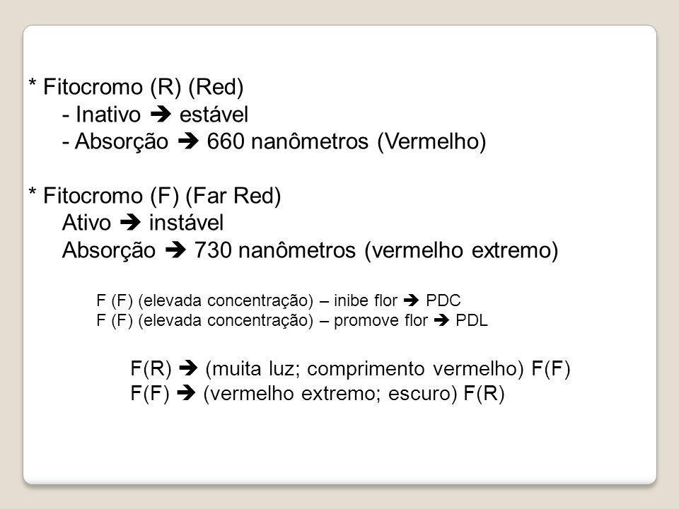- Absorção  660 nanômetros (Vermelho) * Fitocromo (F) (Far Red)