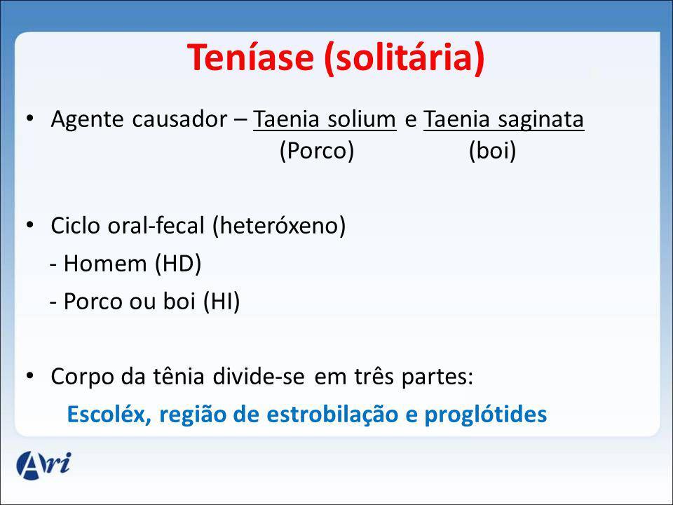 Teníase (solitária) Agente causador – Taenia solium e Taenia saginata (Porco) (boi)