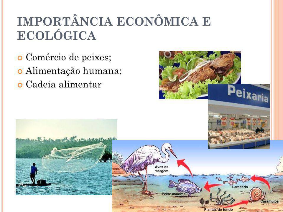 IMPORTÂNCIA ECONÔMICA E ECOLÓGICA