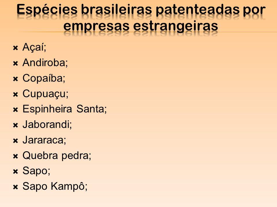 Espécies brasileiras patenteadas por empresas estrangeiras