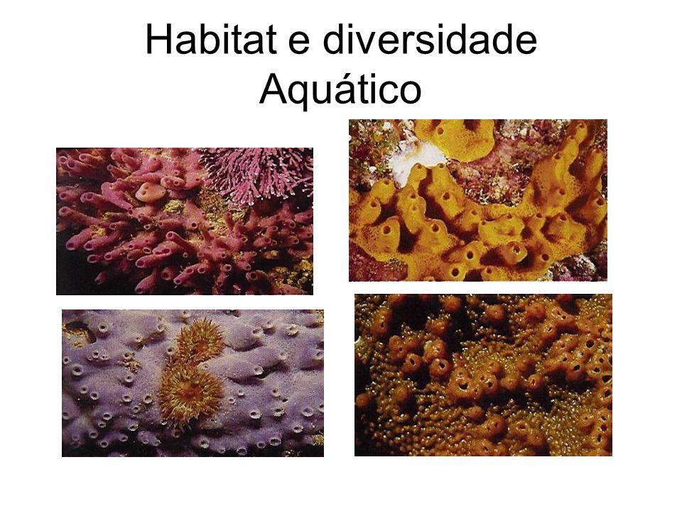 Habitat e diversidade Aquático