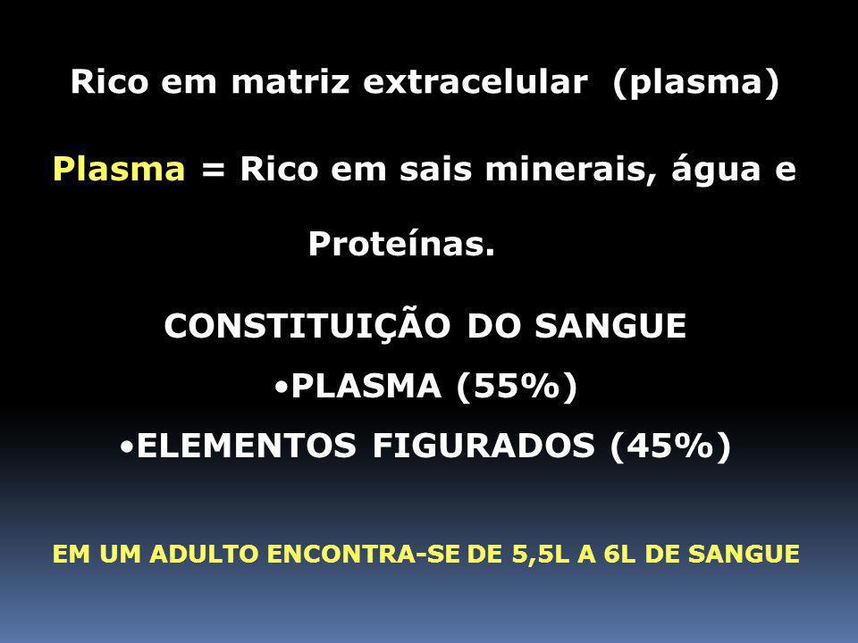 Rico em matriz extracelular (plasma)