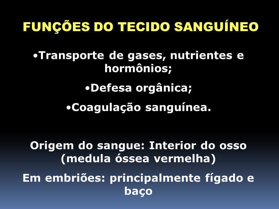 FUNÇÕES DO TECIDO SANGUÍNEO