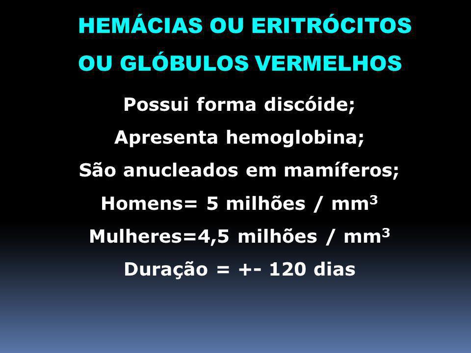 HEMÁCIAS OU ERITRÓCITOS OU GLÓBULOS VERMELHOS