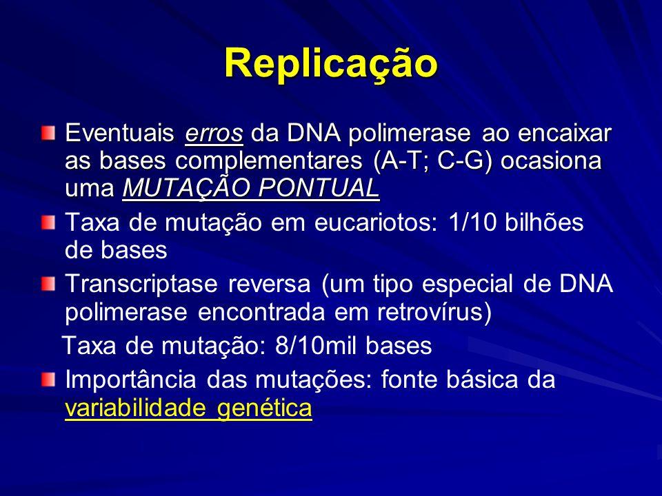 Replicação Eventuais erros da DNA polimerase ao encaixar as bases complementares (A-T; C-G) ocasiona uma MUTAÇÃO PONTUAL.