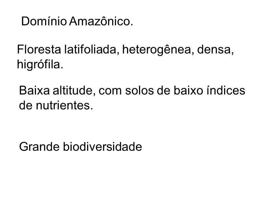 Domínio Amazônico. Floresta latifoliada, heterogênea, densa, higrófila. Baixa altitude, com solos de baixo índices de nutrientes.